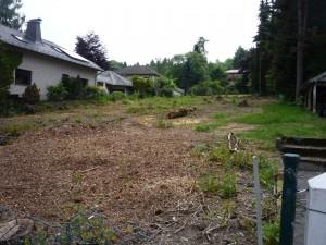 Baugrundstück Schmitten-Heegewiese